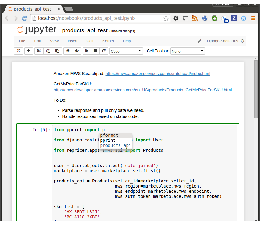 Using the IPython Notebook with the Django shell inside a